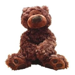 Philbin Teddy Bear Plush