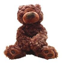Philbin Teddy Bear Plush