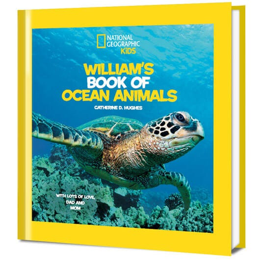 National Geographic Little Kids First Book of Ocean Animals